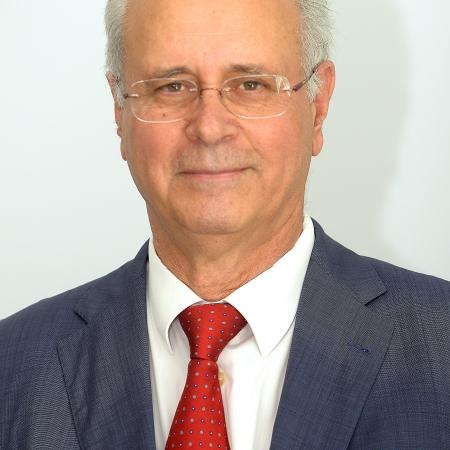 D. José Domingo Martín